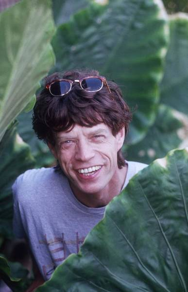 Mick Jagger Photograph - Roving Stone by Slim Aarons