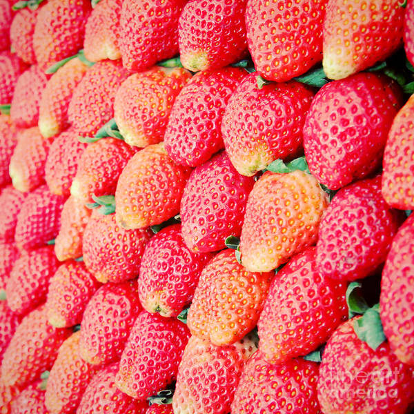 Wall Art - Photograph - Row Of Fresh Strawberry With Retro by Happydancing