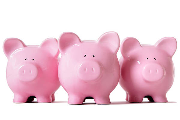 Out Of Business Wall Art - Photograph - Row Of Pink Piggy Banks by Hatman12