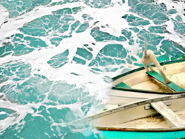 Wall Art - Photograph - Overboard by Diana Angstadt