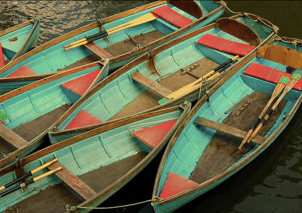 Rowboat Photograph - Rowing Boats by Photo By Stefanie Senholdt
