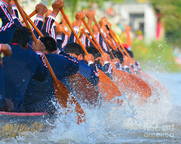Pick Photograph - Rowing Team Race by Chaiyons021
