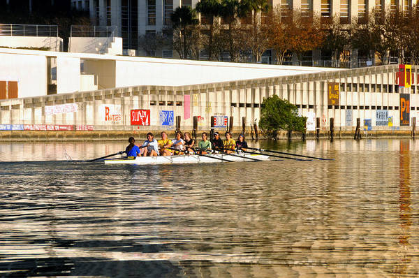 Wall Art - Photograph - Rowing Team Tampa by David Lee Thompson