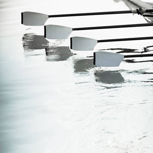 Rowing Wall Art - Photograph - Rowing Teams Oars, Close-up by David Madison