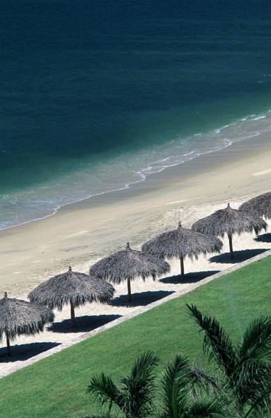 Covering Photograph - Rows Of Palapas On The Beach At Nuevo by Mark D Callanan
