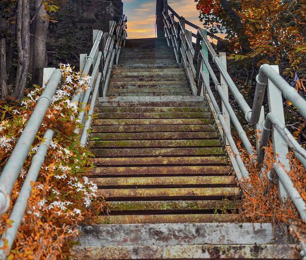 Photograph - Roxborough Avenue Steps Manayunk Philadelphia by Bill Cannon