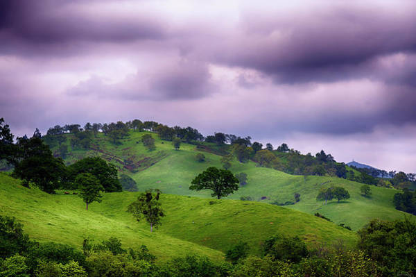 Photograph - Royal Landscape by Dee Browning