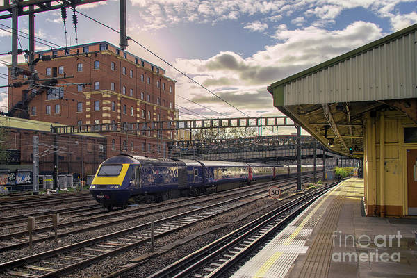Royal Oak Photograph - Royal Oak Hst by Rob Hawkins