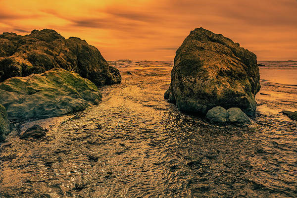 Wall Art - Photograph - Ruby Beach 71601 by Mike Penney