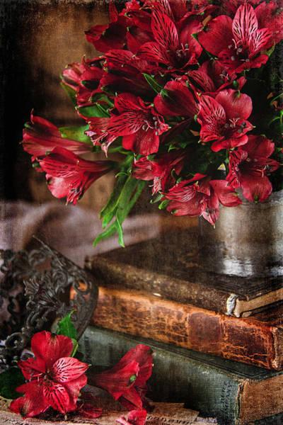 Alstroemeria Photograph - Ruby Red Alstroemeria by Cindi Ressler
