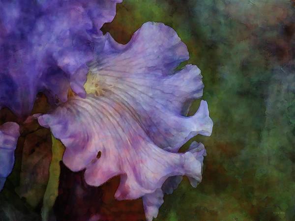 Photograph - Ruffled Petal 1795 Idp_2 by Steven Ward