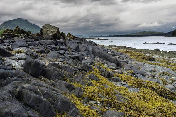 Wall Art - Photograph - Rugged Rocky Coastline Alaska by David L Moore