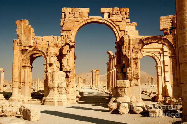 East Asia Wall Art - Photograph - Ruins Of Ancient City Of Palmyra In by Zdenek Chaloupka
