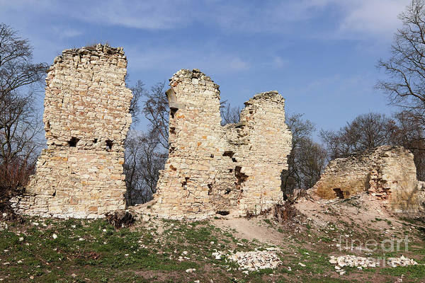 Wall Art - Photograph - Ruins Of The Pravda Castle by Michal Boubin
