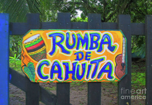 Cahuita Photograph - Rumba De Cahuita by Norma Brandsberg