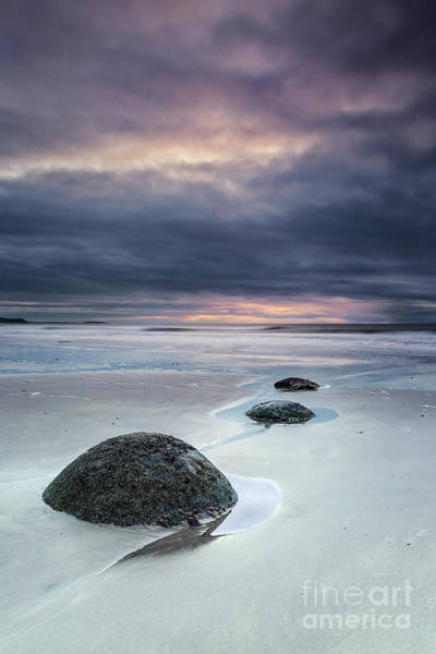 Boulder Photograph - Run With The Tide by Evelina Kremsdorf