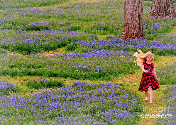 Photograph - Running Where The Bluebells Bloom by Tami Quigley