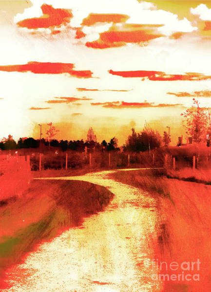 Wall Art - Photograph - Rural Path Painting by Tom Gowanlock