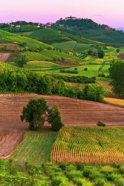 Cultivate Photograph - Rural Scene by Scacciamosche