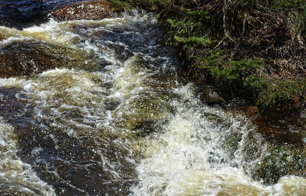 Photograph - Rushing Water by Maggy Marsh