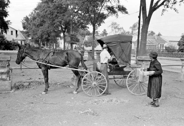 Painting - Russell Lee - Loading Groceries Into Buggy, Lafayette, Louisiana, 1938 by Celestial Images