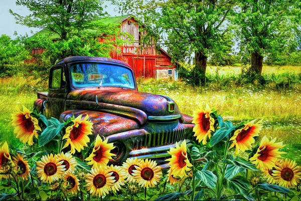 Wall Art - Photograph - Rust In The Sunflowers by Debra and Dave Vanderlaan