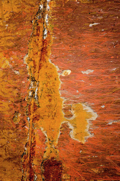 Photograph - Rust Patterns On A Reddish Brown Ship's Hull by Frans Blok
