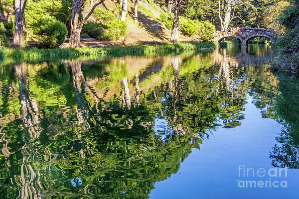 Photograph - Rustic Reflections by Kate Brown