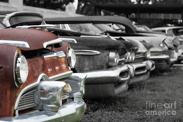 Photograph - Rusty And Decaying by Paul Quinn