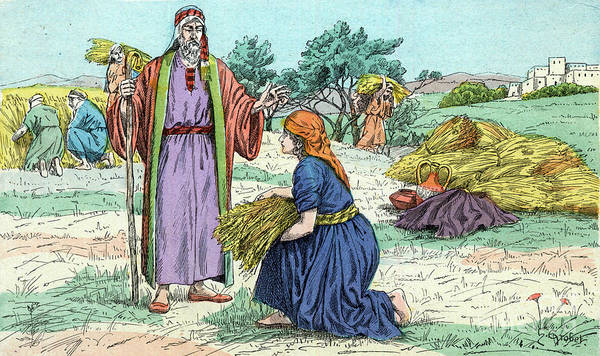 Wall Art - Drawing - Ruth In The Field Of Boaz, The Meeting Of Ruth And Boaz by Unknown
