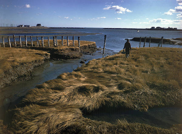 New Hampshire Photograph - Rye Harbor, New Hampshire by Eliot Elisofon