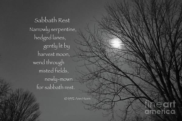 Photograph - Sabbath Rest by Ann Horn