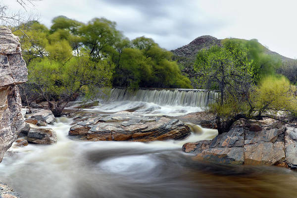 Coronado National Forest Photograph - Sabino Canyon Falls by Mitch Cat