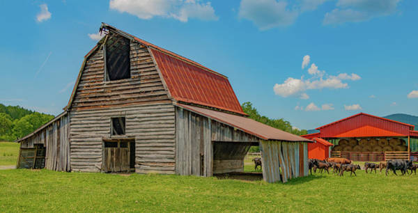 Wall Art - Photograph - Saddle Barn Of Rural Georgia by Marcy Wielfaert