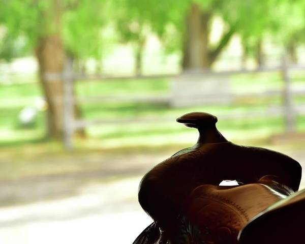 Photograph - Saddle Horn by Jerry Sodorff