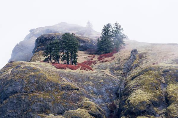 Photograph - Saddle Mountain Top by Robert Potts