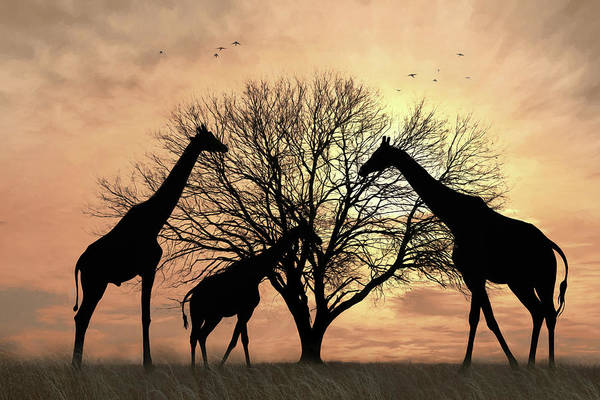 Wall Art - Mixed Media - Safari Silhouettes by Lori Deiter