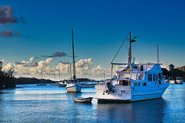 Photograph - Safe Harbor Series 8899 by Carlos Diaz