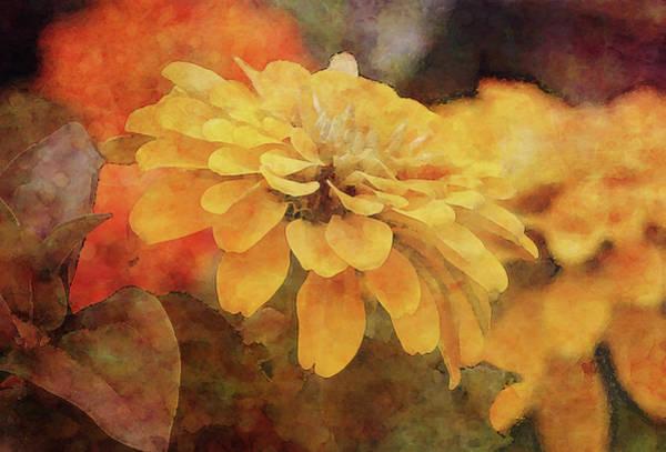 Photograph - Saffron Petals 7228 Idp_2 by Steven Ward