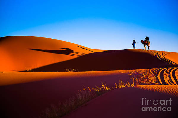 Wall Art - Photograph - Sahara Desert Sand by Stepanov Ilya