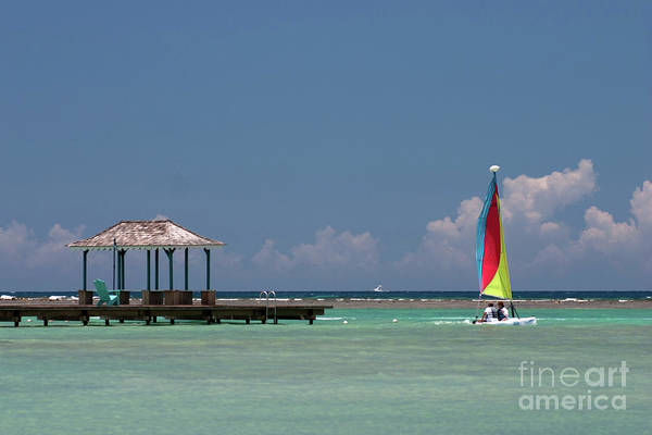 Wall Art - Photograph - Sail Away by John Edwards