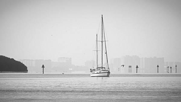 Sail Out Of Sarasota Art Print
