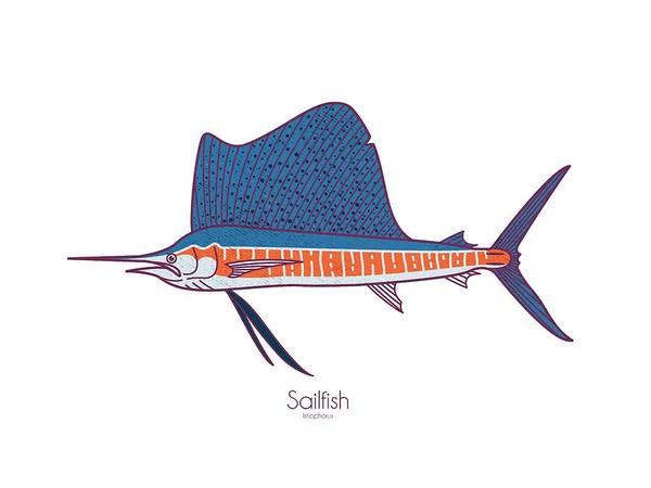 Offshore Wall Art - Digital Art - Sailfish by Kevin Putman