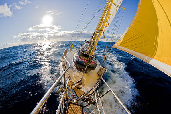 Photograph - Sailing A Ketch by John White Photos