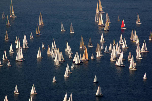 Contest Photograph - Sailing Boats by Max Paoli