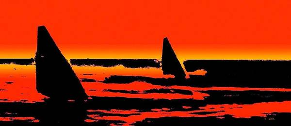 Photograph - Sailing In Paradise - Silhouette by VIVA Anderson