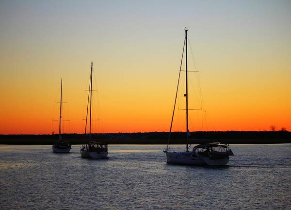 Photograph - Sailing Into The Sunset by Cynthia Guinn