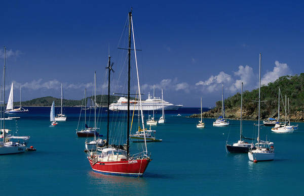 Yacht Photograph - Sailing Ships And Cruise Ship In Harbour by Wayne Walton
