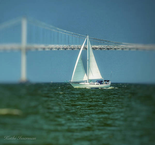 Wall Art - Photograph - Sailing The Bay by Kathi Isserman