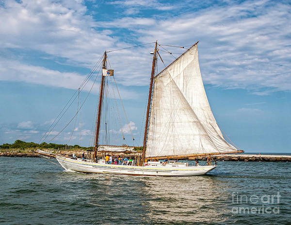 Photograph - Sailing The Intercoastal by Nick Zelinsky